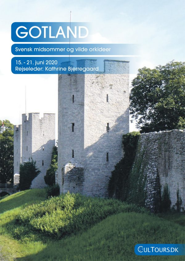 Gotland midsommer rejse